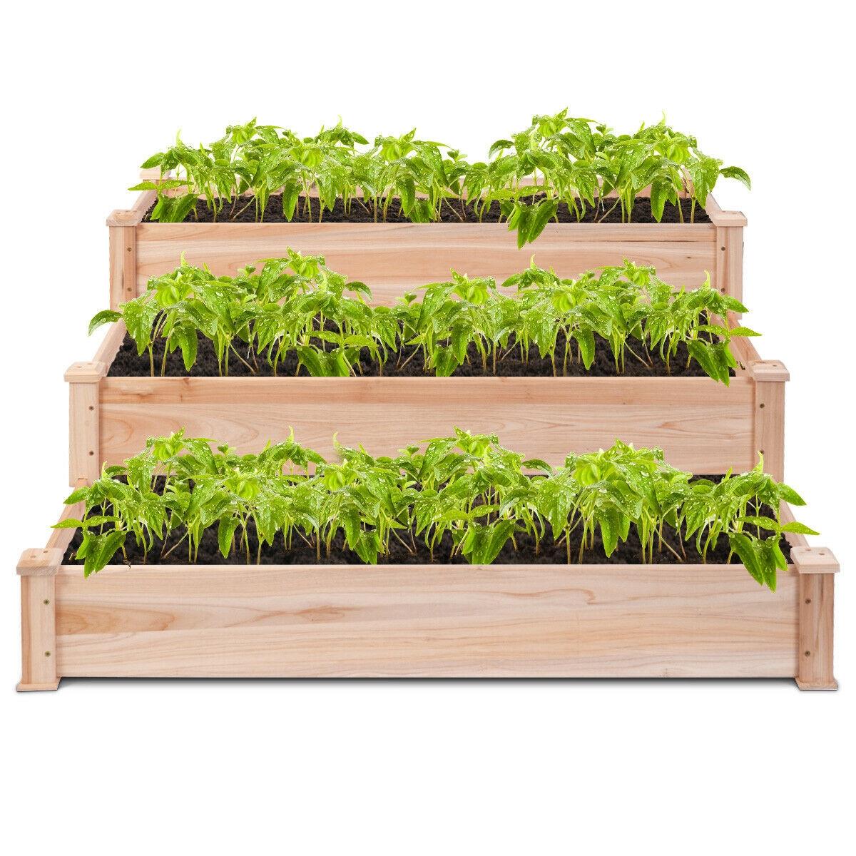 3 Tier Elevated Wooden Vegetable Garden Bed