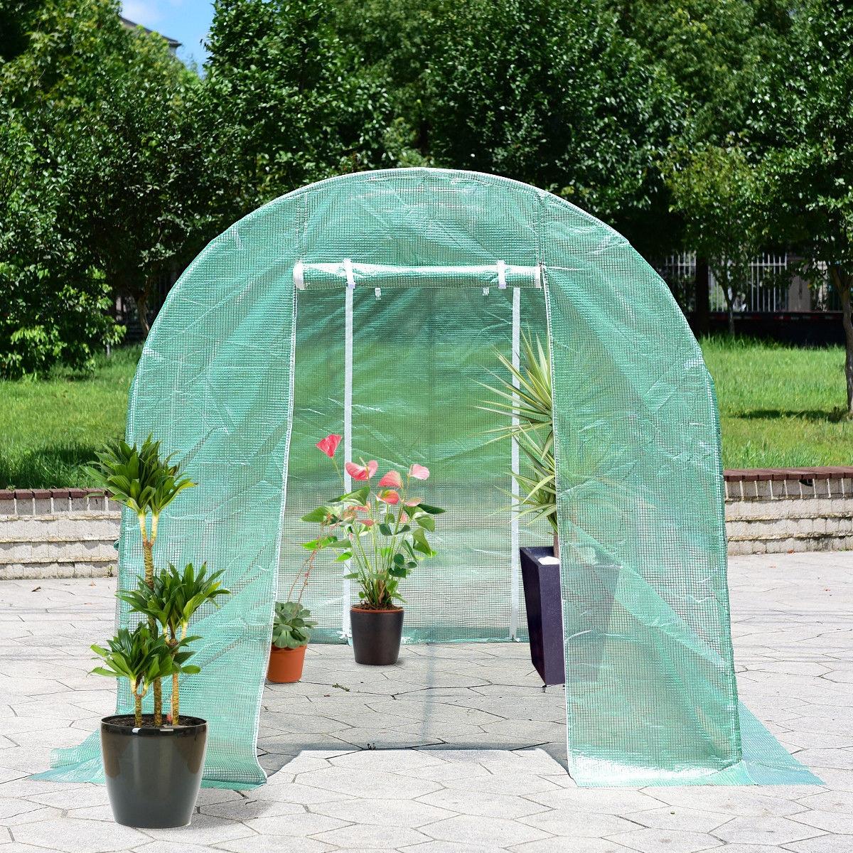 6 Windows Steel Frame Backyard Walk-in Greenhouse